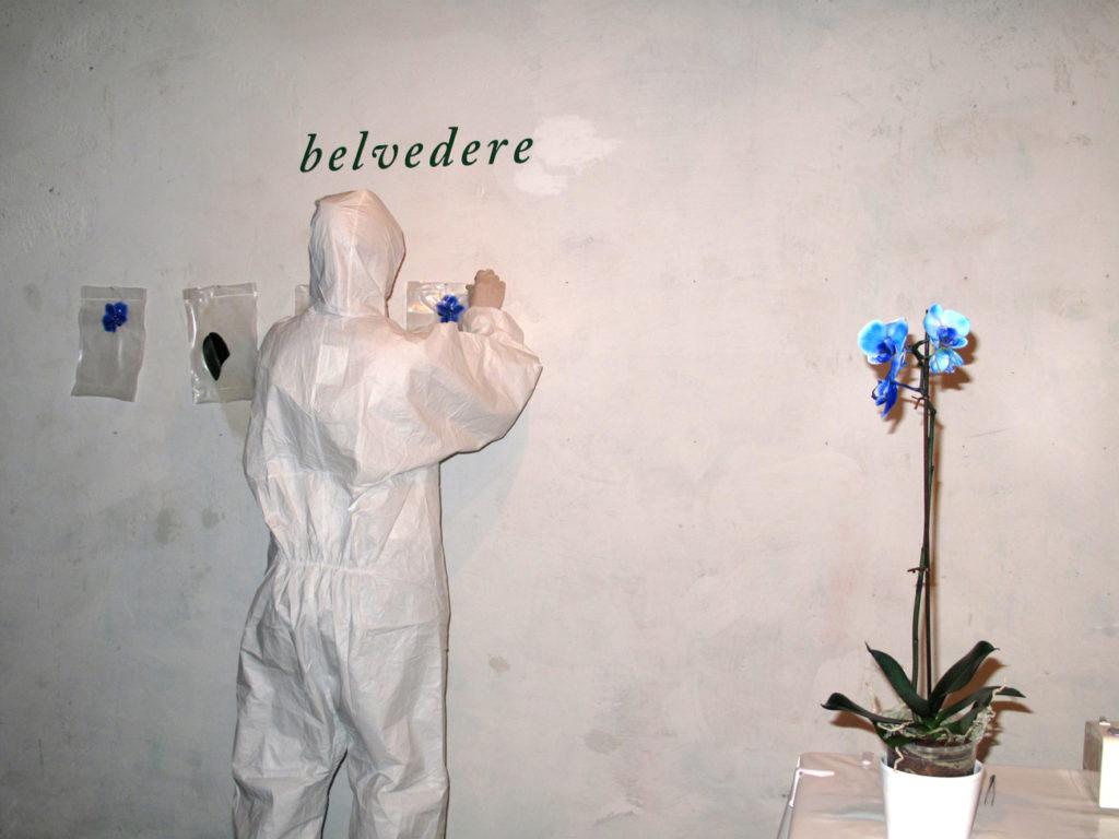 belvedere3