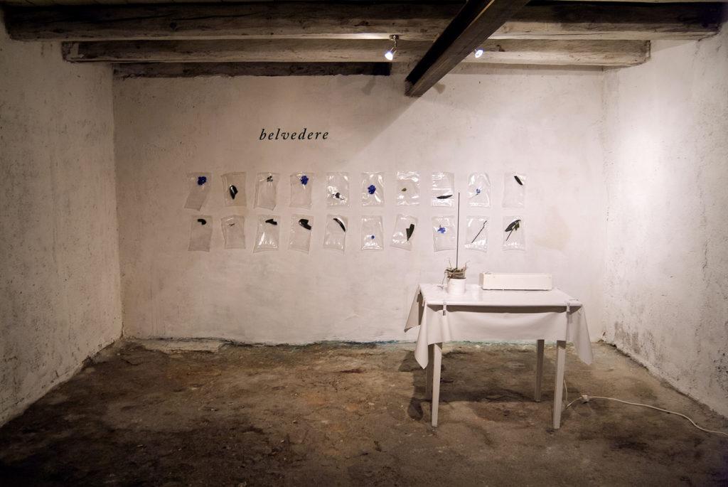 belvedere_installation_ende