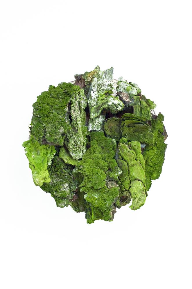 grünerkreis_web